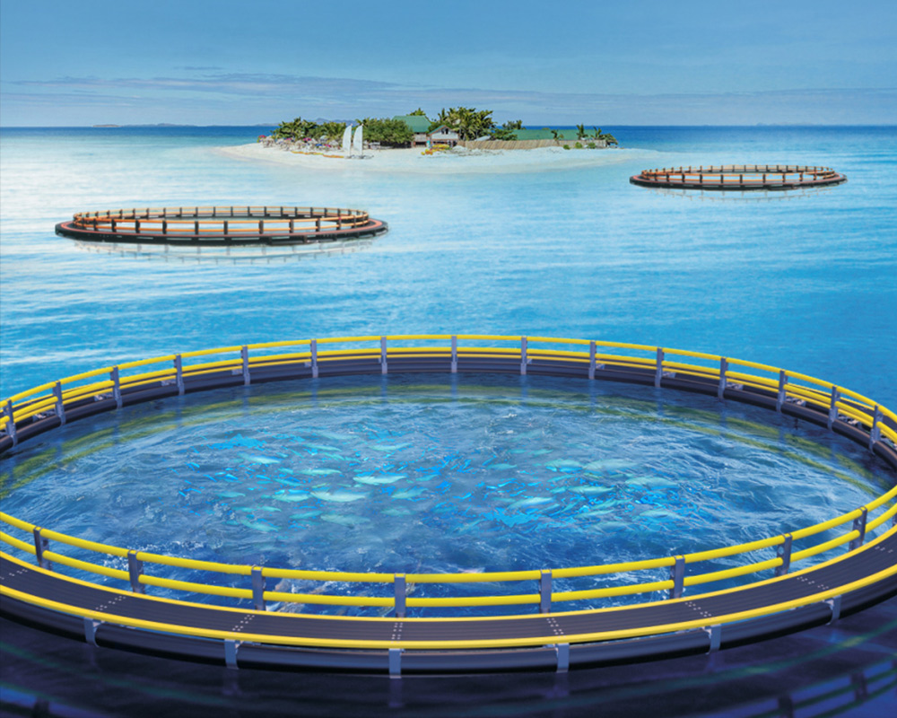 深海网箱1