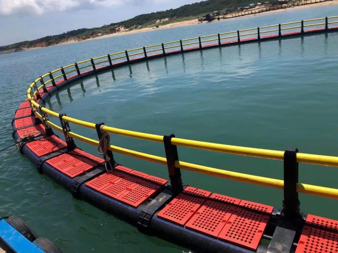 山猫直播资讯   助力海上养殖转型升级
